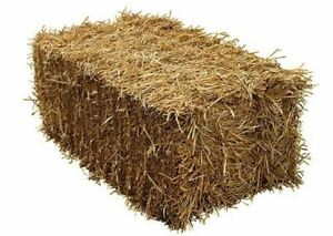 Small Square Straw Bales for Bedding and Garden Mulch