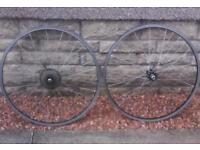 """2 Junior road bike wheels 24"""" with shimano 7 gear casette"""
