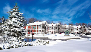 Carriage Hill Resort Timeshare Ownership at Horseshoe Valley Peterborough Peterborough Area image 8