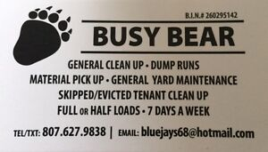 Cleaning / dump runs / skipped or evicted tenant clear out