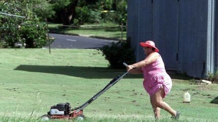 Lawn mower and wiper hire $25 a day