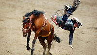 Rodeo,Chucks and Evening Grandstand Final show Sunday,July 12