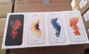 IPHONE 6S 16GB BRAND NEW ROGERS WITH ONE YEAR APPLE WARRANTY   $