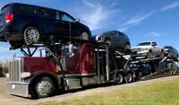 VEHICLE TRANSPORT/ FREIGHT FORWARDER