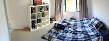 250p/w Big Room in Caringbah South Caringbah Sutherland Area Preview