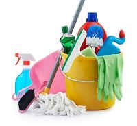 Experienced female cleaner