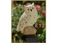 Solar Light-up Owl.
