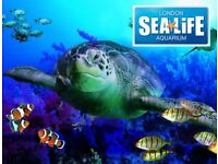 2 TICKETS TO LONDON SEA LIFE AQUARIUM SATURDAY 28TH OCTOBER 2017 28/10/17