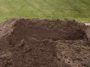 Wanted, free fill soil loam dirt Adamstown Heights Newcastle Area Preview