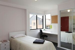 Macquarie University Village Room Contact for sale (Only females) Marsfield Ryde Area Preview