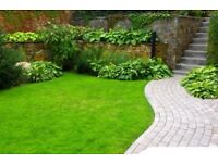 Gardening and Lawn mowing Services