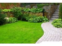 Jet washing, Lawn mowing, Gardening and Cleaning Services, Free quotes