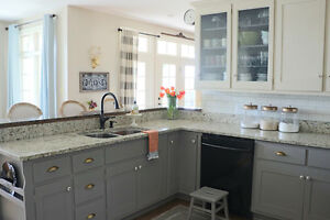 Update your kitchen cabinets in days!