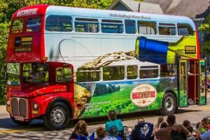 NOW HIRING: Class CZ Drivers for Double Decker Wine Tour