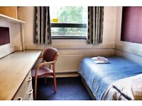 *unique opportunity* * great for students* single room in student hall accommodation, Russel Square