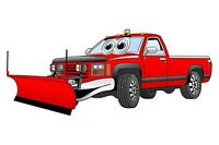 Prince Edward County Snow plowing