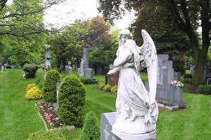 2 burial plots in Park Lawn Cemetery