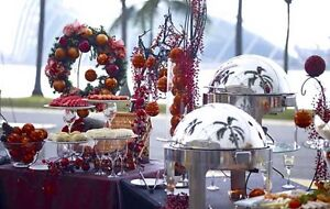 Party Rentals & Event Planner (Chocolate Fountain,Table, Chairs) Oakville / Halton Region Toronto (GTA) image 4