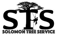 Ottawa Tree Services Cutting or Trimming and Stump Removal