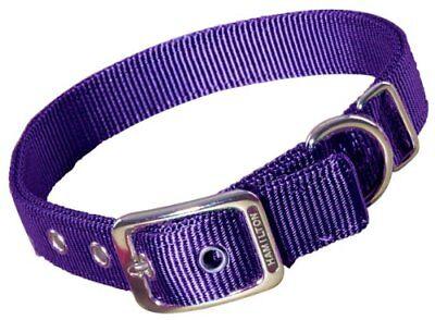 Hamilton Double Thick Nylon Deluxe Dog Collar, 1-Inch by 26-Inch, Purple