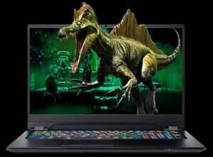 "Resistance Fury V5 17.3"" i7-9750H RTX2080 Gaming Laptop"