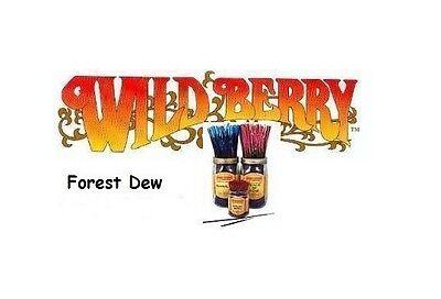 Wild Berry 'Forest Dew' Incense Sticks (pk10) (M7)