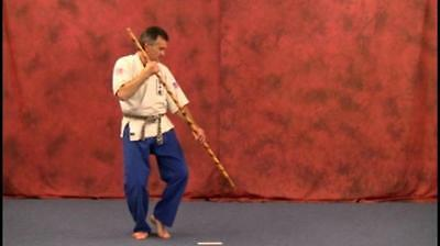 Bo Staff - Martial Arts Weapon Instructional Karate DVD How To - FREE SHIPPING