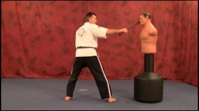 Han Bo - Martial Arts Weapon Instructional Karate DVD How To - FREE SHIPPING