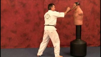 Tonfa - Martial Arts Weapon Instructional Karate DVD How To - FREE SHIPPING