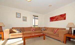 Comfortable 6 seater Modular sofa  great condition. Bargain Harrison Gungahlin Area Preview