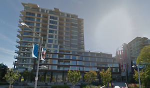 $2150 / 2br - 770ft2 - 2 bed 2 bath Condo Avail Sept 1, 2017 (Ol