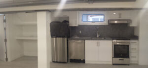 Bright 1 bedroom basement with windows, brand new renovations
