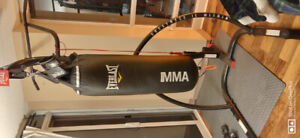Gently used Everlast 80lb Punching Bag w Heavy Duty Stand- $240