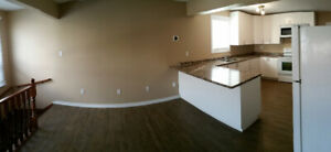 Gorgeous, Spacious Rooms (3) on Direct Bus Route to Brock U!