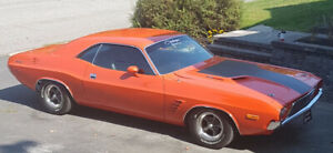Challenger 1973 , auto collection