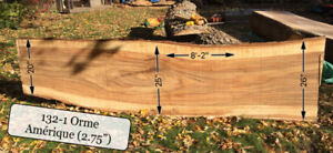 Orme Elm Live edge wood bois Table dining table slab planche WOW