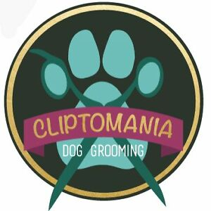 Cliptomania Dog Grooming Jindalee Brisbane South West Preview
