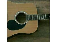 Raypierre electro acoustic guitar