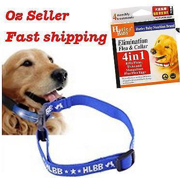 Dog Flea Collar Ebay