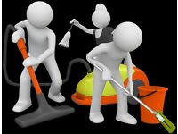 Experienced Cleaner - Domestic & Commercial