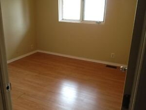 ROOM in prime area > close to both Universities and main transit Kitchener / Waterloo Kitchener Area image 1