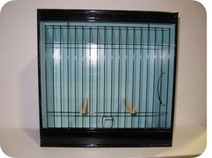 Canary Show Cage