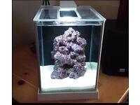 Fluval Spec 10L Aquarium / Fish Tank