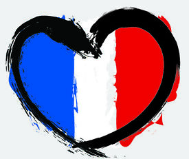 Online French Lessons - Native French Tutor