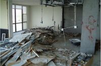 Demolition jobs big & small clean up / junk removal