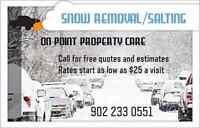 SNOW REMOVAL/SALTING