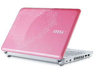 MSI Wind for Love Pink Netbook (Best Offer)