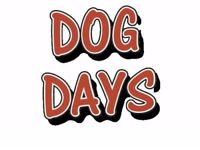 Dog Day's Dog Walking & Pet Sitting Services.