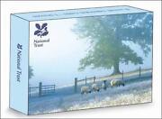 Sheep Christmas Cards