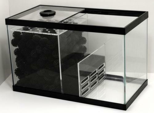 Wet dry sump fish aquariums ebay for Fish tanks for sale ebay